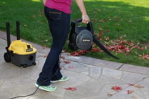 wet and dry vacuum cleaner -- with blower